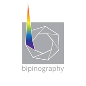 Bipinography icon