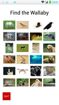 Find the Animal poster