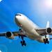 Avion Flight Simulator