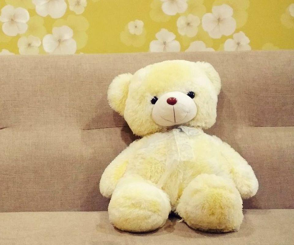 teddy bear wallpaper hd for android apk download