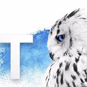TEI University icon