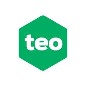 Teo icon