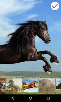 Horses Lock Screen apk screenshot