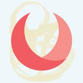 Voxox 图标