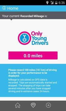 Only Young Drivers poster