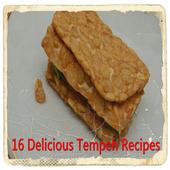 Delicious Tempeh Recipes icon