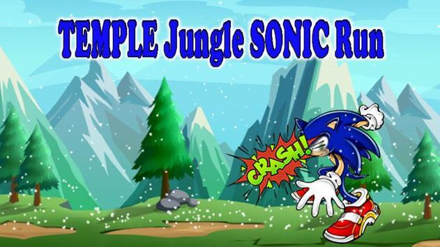Temple Jungle Sonic World Run poster