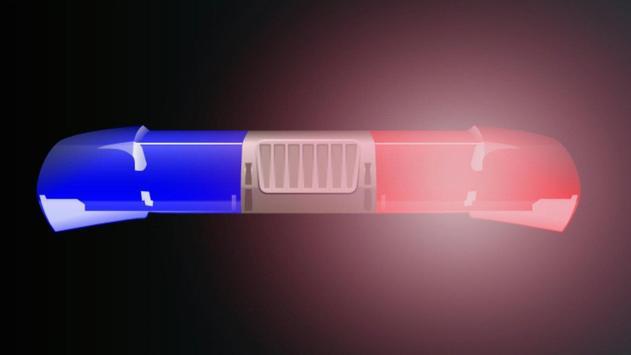 Police Siren (Light and Voice) screenshot 2