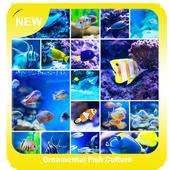 Ornamental Fish Culture icon