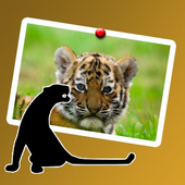 wonderful jungle animals icon