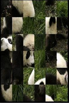 Cute Panda apk screenshot
