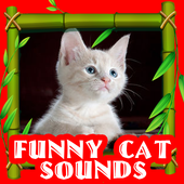 Funny Cat Sounds Tips icon