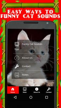 Funny Cat Sounds Tips poster