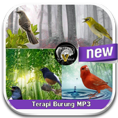 MP3 Bird Therapy icon