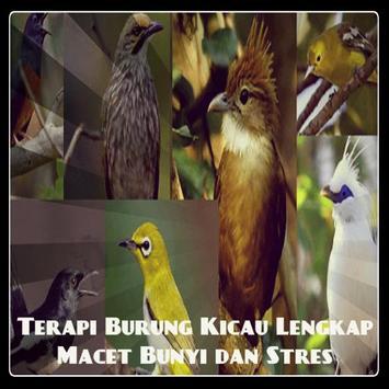 Terapi Burung Kicau Lengkap poster