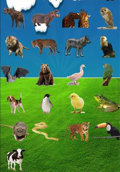 Animals Sounds screenshot 3