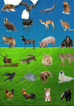Animals Sounds apk screenshot