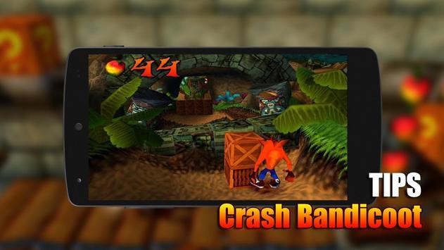 Tips Crash Bandicoot poster