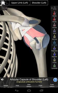 Essential Anatomy 3 for Orgs. screenshot 14