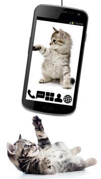 Little Kitty GO Launcher Theme poster