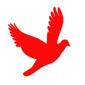 AstrologerChennai icon