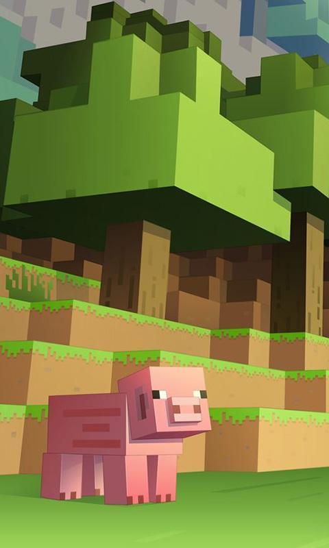 Android 用の Skins Minecraft Wallpapers APK をダウンロード