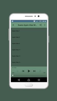 Suara Ayam Alas Mp3 Offline screenshot 2