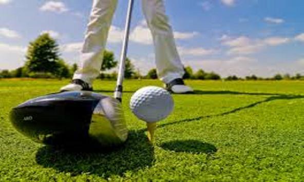 Art of Golf screenshot 1