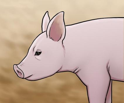 Learn How to Draw Farm Animals screenshot 6