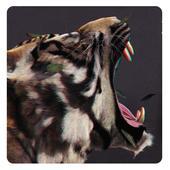 3D 입체동물 체험판 icon