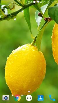 Material Yellow Lemon CM Theme poster
