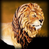 Real Angry Lion attack Free icon