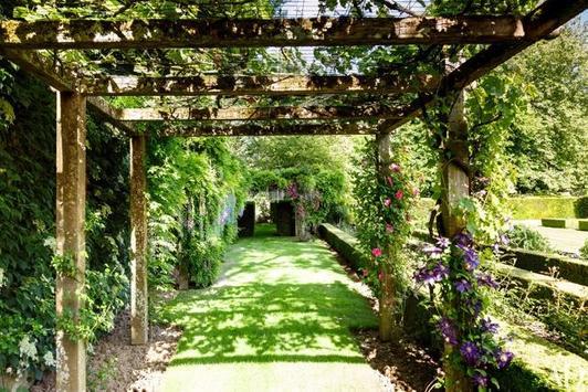 The Garden screenshot 5
