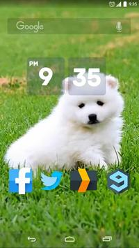 Cute Japanese Spitz Live WP poster