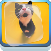 Kittens Dancing Live Wallpaper icon
