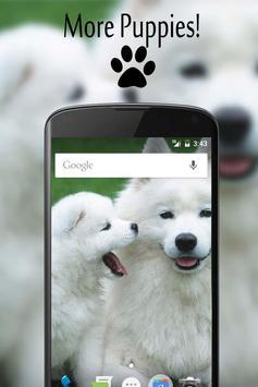 Auto Pup screenshot 2