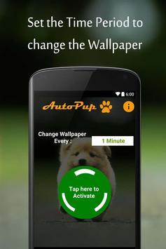 Auto Pup screenshot 4