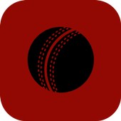 Cricket Facts icon