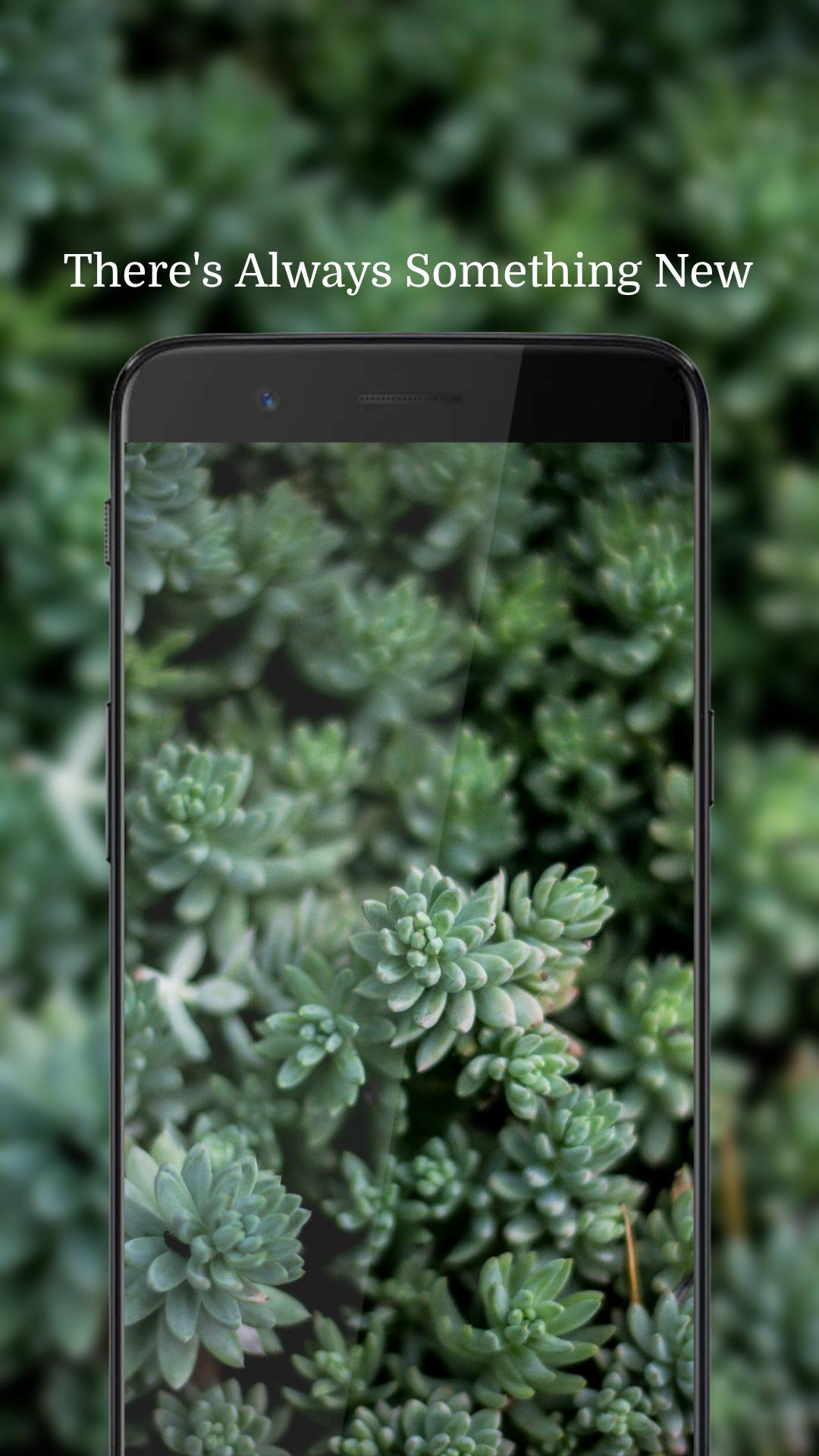Full HD Wallpaper Backdrop Background & Walls for Android