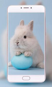 Pets Wallpapers - Dogs, Cats, Birds, Bunnies, screenshot 3