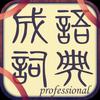 成語詞典 icon