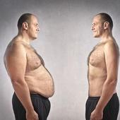 मोटापा कम करने  के हिंदी टिप्स icon