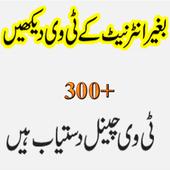 Pakistani Tv icon