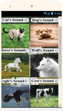 animals sounds poster