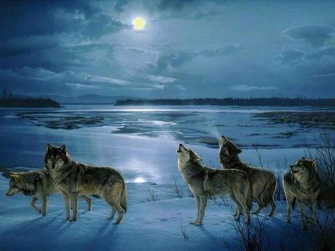 Wolf Barking Sound poster