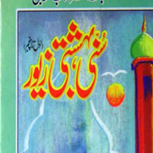 Sunni Bahishti Zevar icon