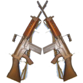 Arms Act icon