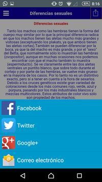 Guia del Betta screenshot 5