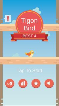Tigon Bird poster