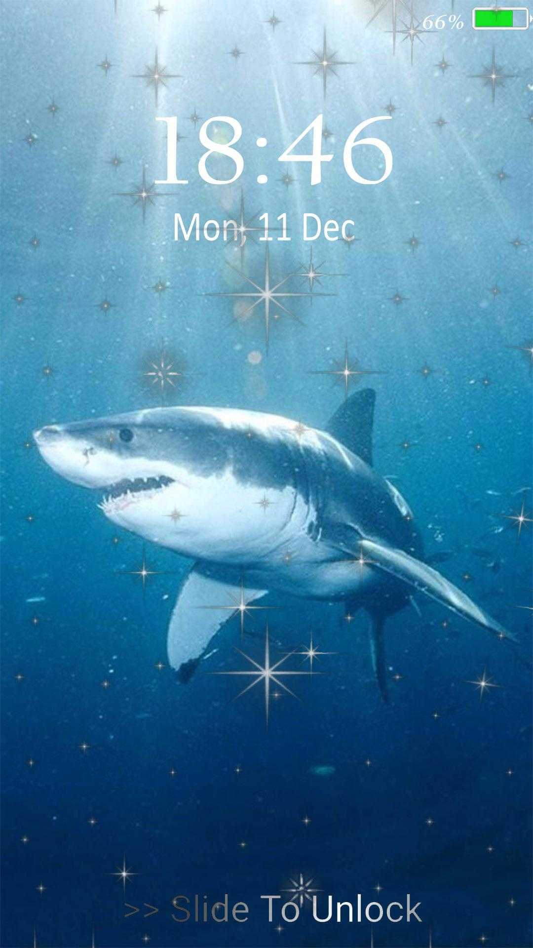 Tiger Sharks 3d Live Wallpaper For Android Apk Download
